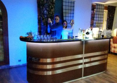 Barman w pracy - EliteGastro - Radosław Kosmowski (42)