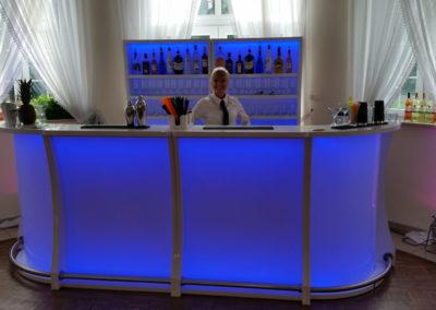 Barman w pracy - EliteGastro - Radosław Kosmowski (57)