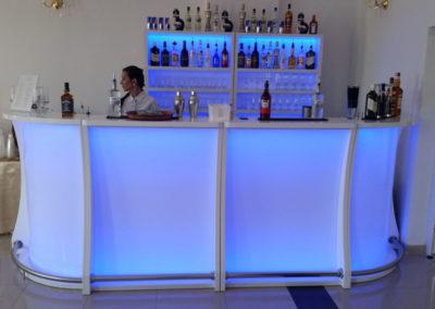 Barman w pracy - EliteGastro - Radosław Kosmowski (60)
