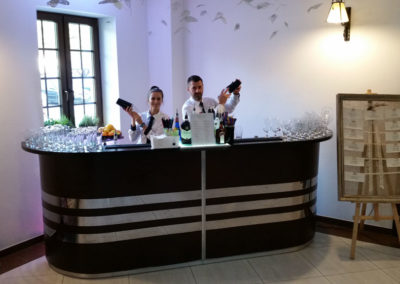 Barman w pracy - EliteGastro - Radosław Kosmowski (62)