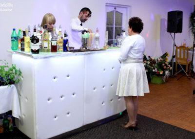 Barman w pracy - EliteGastro - Radosław Kosmowski (75)